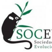 (c) Socevol.cl